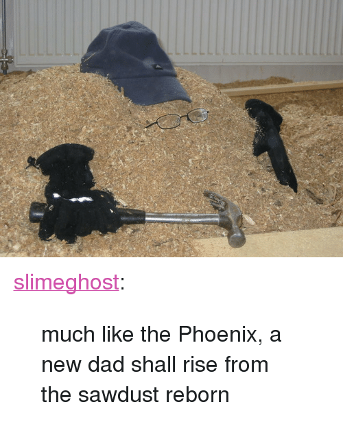 """reborn: <p><a class=""""tumblr_blog"""" href=""""http://slimeghost.tumblr.com/post/139896136220"""">slimeghost</a>:</p><blockquote> <p>much like the Phoenix, a new dad shall rise from the sawdust reborn</p> </blockquote>"""