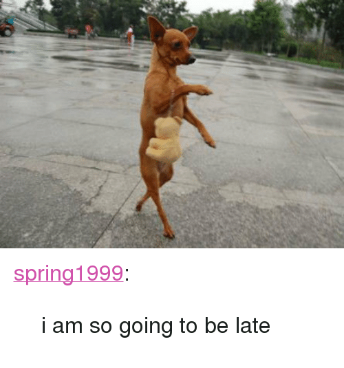 """Going To Be Late: <p><a class=""""tumblr_blog"""" href=""""http://spring1999.tumblr.com/post/64929770518"""" target=""""_blank"""">spring1999</a>:</p> <blockquote> <p>i am so going to be late</p> </blockquote>"""