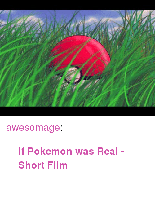 "Pokemon, Tumblr, and Blog: <p><a href=""https://awesomage.tumblr.com/post/173714416530/if-pokemon-was-real-short-film"" class=""tumblr_blog"">awesomage</a>:</p><blockquote><p><b><a href=""https://www.indiegogo.com/projects/if-pokemon-was-real-short-film-adventure-fantasy#/"">  If Pokemon was Real - Short Film</a></b><br/><br/></p></blockquote>"