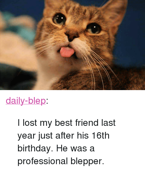 25+ Best Memes About 16Th Birthday