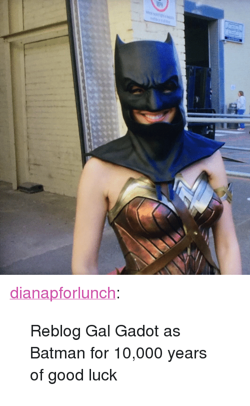 "Batman, Tumblr, and Blog: <p><a href=""https://dianapforlunch.tumblr.com/post/170850079858/reblog-gal-gadot-as-batman-for-10000-years-of"" class=""tumblr_blog"">dianapforlunch</a>:</p><blockquote><p>Reblog Gal Gadot as Batman for 10,000 years of good luck</p></blockquote>"
