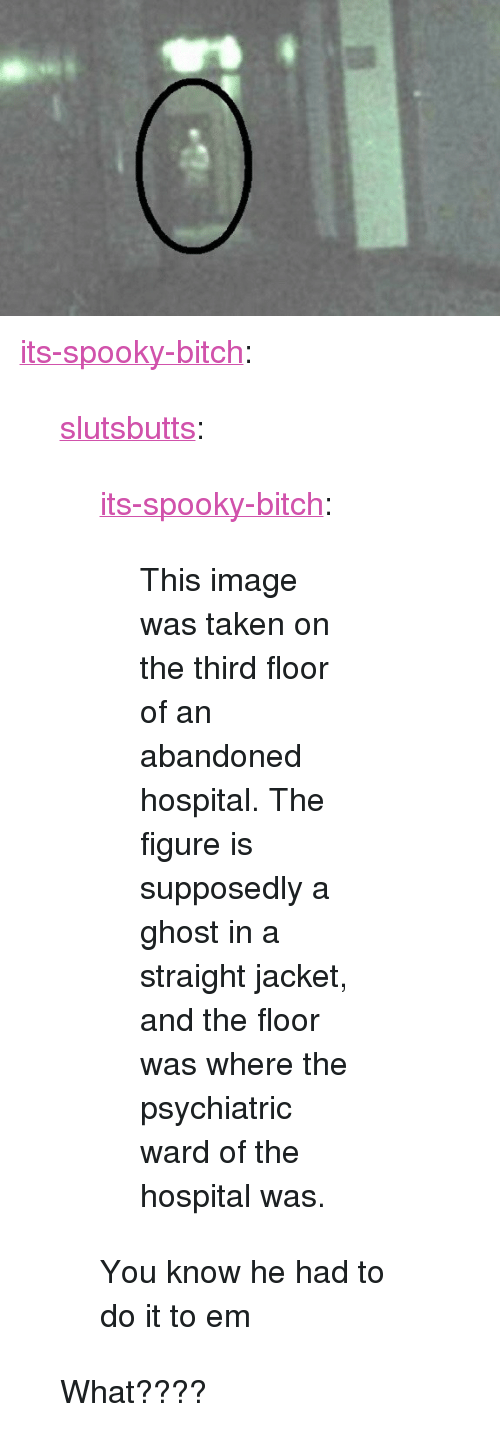 "Bitch, Taken, and Tumblr: <p><a href=""https://its-spooky-bitch.tumblr.com/post/170196363831/slutsbutts-its-spooky-bitch-this-image-was"" class=""tumblr_blog"">its-spooky-bitch</a>:</p> <blockquote> <p><a href=""http://slutsbutts.tumblr.com/post/170188071999/its-spooky-bitch-this-image-was-taken-on-the"" class=""tumblr_blog"">slutsbutts</a>:</p>  <blockquote> <p><a href=""https://its-spooky-bitch.tumblr.com/post/170118487177/this-image-was-taken-on-the-third-floor-of-an"" class=""tumblr_blog"">its-spooky-bitch</a>:</p> <blockquote><p>This image was taken on the third floor of an abandoned hospital. The figure is supposedly a ghost in a straight jacket, and the floor was where the psychiatric ward of the hospital was.</p></blockquote>  <p>You know he had to do it to em </p> </blockquote>  <p>What????</p> </blockquote>"