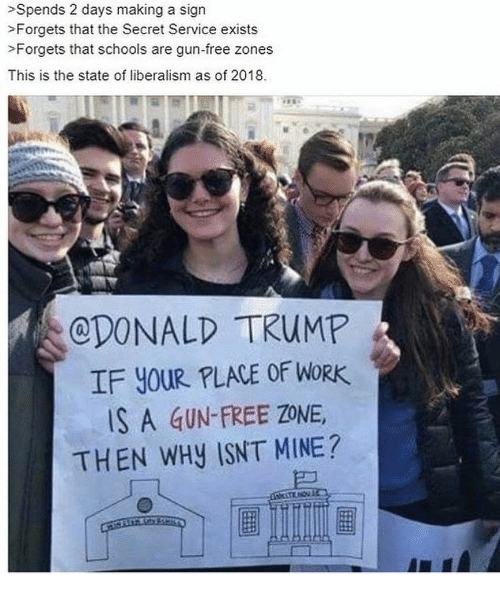 Memes, Work, and Free: >Spends 2 days making a sign  >Forgets that the Secret Service exists  >Forgets that schools are gun-free zones  This is the state of liberalism as of 2018.  CDONALD TRUMP  IF YOUR PLACE OF WORK  S A GUN-FREE ZONE,  THEN WHY ISNT MINE?