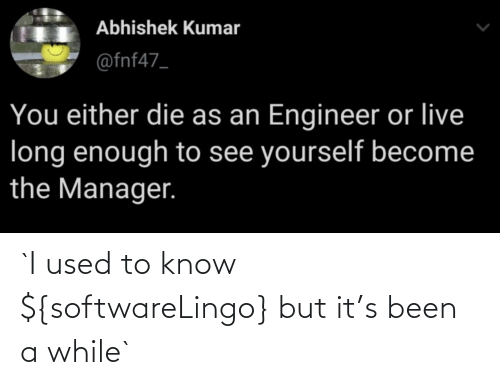 I Used To: `I used to know ${softwareLingo} but it's been a while`