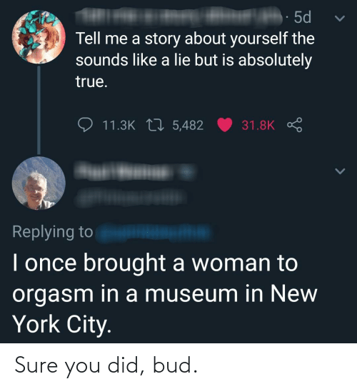 in-new-york-city: · 5d  Tell me a story about yourself the  sounds like a lie but is absolutely  true.  11.3K 17 5,482  31.8K S  Replying to  I once brought a woman to  orgasm in a museum in New  York City. Sure you did, bud.
