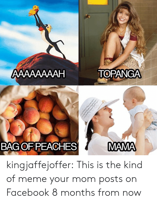 Facebook, Meme, and Target: АAААААААН  TOPANGA  MAMA  BAGOF PEACHES kingjaffejoffer: This is the kind of meme your mom posts on Facebook 8 months from now