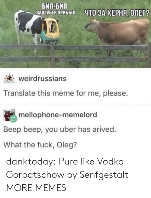 Vodka: БИП-БИП  ВАШ УБЕР ПРИБЫЛ  ЧТО ЗА ХЕРНЯ, ОЛЕГ?  weirdrussians  Translate this meme for me, please.  mellophone-memelord  Beep beep, you uber has arived.  What the fuck, Oleg? danktoday:  Pure like Vodka Gorbatschow by Senfgestalt MORE MEMES