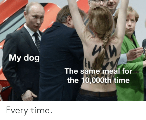 Time, Dog, and For: ИИ  My dog  The same meal for  the 10,000th time Every time.