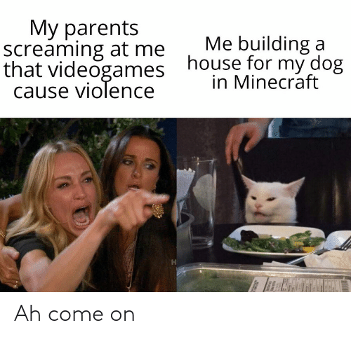 Minecraft, Parents, and House: Мy parents  screaming at me  that videogames  cause violence  Me building a  house for my dog  in Minecraft Ah come on