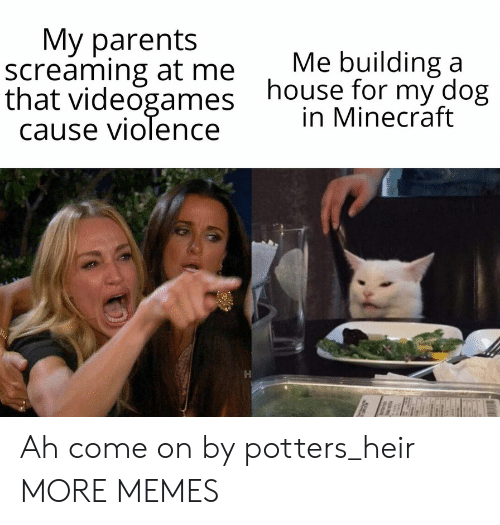 Dank, Memes, and Minecraft: Мy parents  screaming at me  that videogames  cause violence  Me building a  house for my dog  in Minecraft Ah come on by potters_heir MORE MEMES