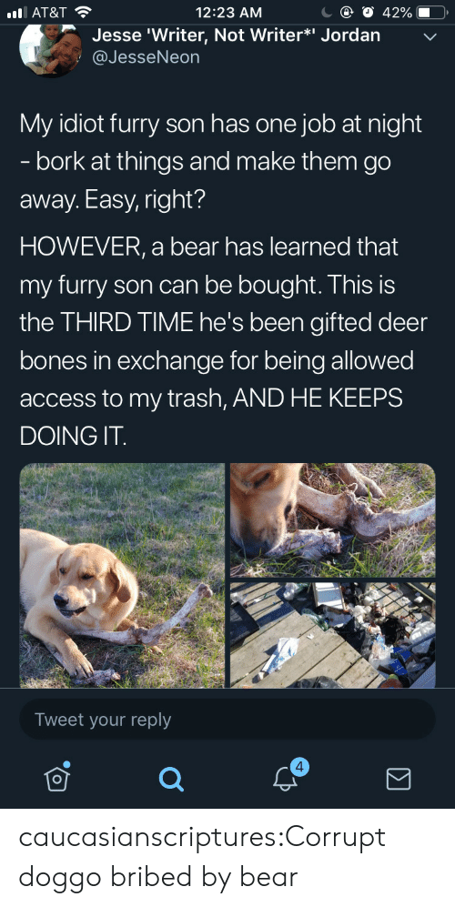Bones, Deer, and Trash: С @ О 42%-O,  12:23 AM  l AT&T  Jesse 'Writer, Not Writer*i Jordan  @JesseNeon  My idiot furry son has one job at night  - bork at things and make them go  away. Easy, right?  HOWEVER, a bear has learned that  my furry son can be bought. This is  the THIRD TIME he's been gifted deer  bones in exchange for being allowed  access to my trash, AND HE KEEPS  DOING IT  Tweet your reply  4 caucasianscriptures:Corrupt doggo bribed by bear