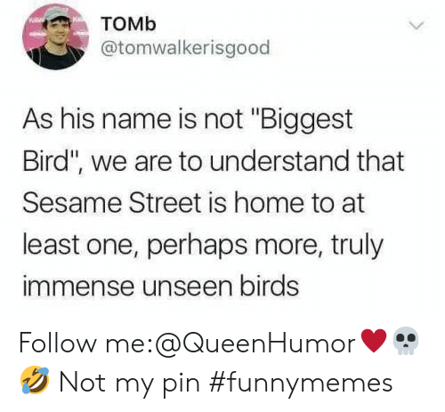 "Sesame Street, Birds, and Home: Томь  @tomwalkerisgood  As his name is not ""Biggest  Bird"", we are to understand that  Sesame Street is home to at  least one, perhaps more, truly  immense unseen birds Follow me:@QueenHumor♥️💀🤣 Not my pin #funnymemes"