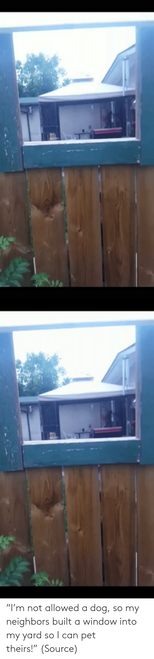 "So I: ""I'm not allowed a dog, so my neighbors built a window into my yard so I can pet theirs!"" (Source)"