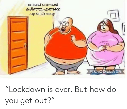 "But How: ""Lockdown is over. But how do you get out?"""