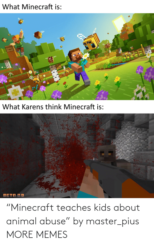 """Animal: """"Minecraft teaches kids about animal abuse"""" by master_pius MORE MEMES"""