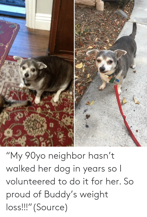 "buddy: ""My 90yo neighbor hasn't walked her dog in years so I volunteered to do it for her. So proud of Buddy's weight loss!!!""(Source)"