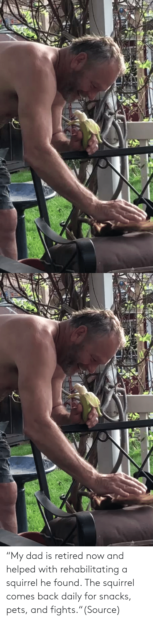 """Umblr: """"My dad is retired now and helped with rehabilitating a squirrel he found. The squirrel comes back daily for snacks, pets, and fights.""""(Source)"""