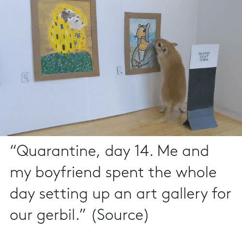 "Aww, Reddit, and Target: ""Quarantine, day 14. Me and my boyfriend spent the whole day setting up an art gallery for our gerbil."" (Source)"