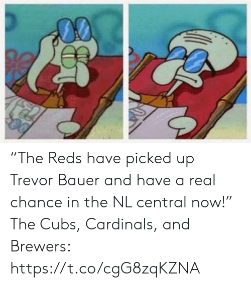 "Sports, Cardinals, and Cubs: ""The Reds have picked up Trevor Bauer and have a real chance in the NL central now!""  The Cubs, Cardinals, and Brewers: https://t.co/cgG8zqKZNA"