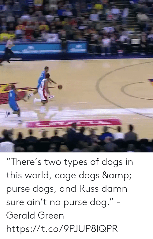 "Dogs, Memes, and World: ""There's two types of dogs in this world, cage dogs & purse dogs, and Russ damn sure ain't no purse dog."" - Gerald Green  https://t.co/9PJUP8lQPR"