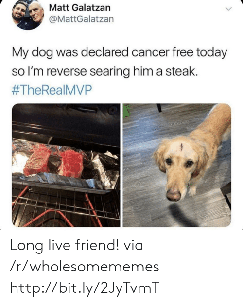 Cancer, Free, and Http: も、Matt Galatzan  @MattGalatzan  My dog was declared cancer free today  so l'm reverse searing him a steak.  #TheReal MVP Long live friend! via /r/wholesomememes http://bit.ly/2JyTvmT