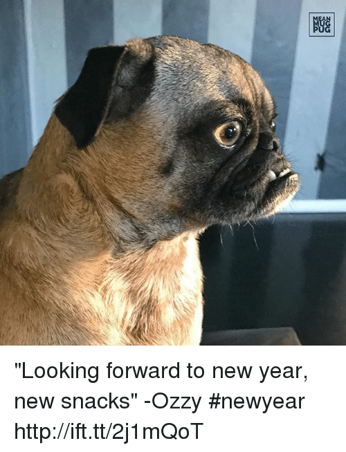 "Memes, 🤖, and Ozzy: 剷 ""Looking forward to new year, new snacks"" -Ozzy #newyear http://ift.tt/2j1mQoT"