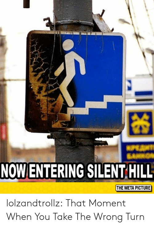 that moment when you: 困  NOW ENTERING SILENT HILL  THE META PICTURE lolzandtrollz:  That Moment When You Take The Wrong Turn