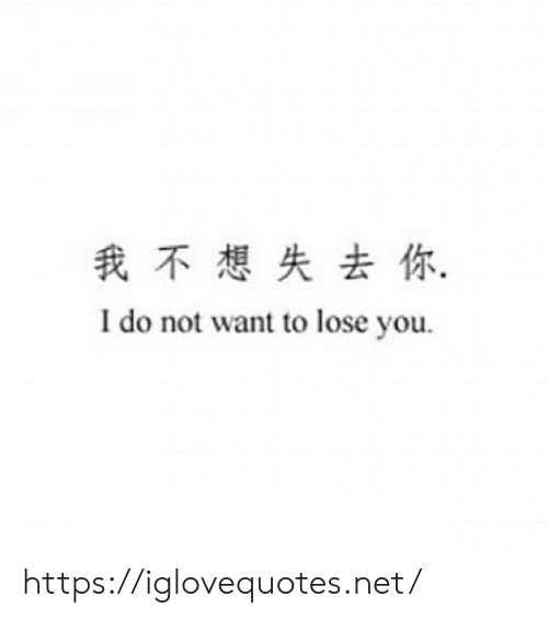 Net, You, and Lose: 我不想失去你,  I do not want to lose you https://iglovequotes.net/