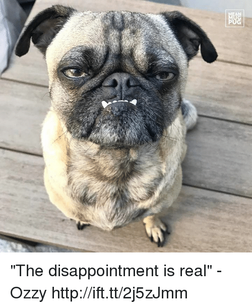 "Memes, 🤖, and Ozzy: 显 ""The disappointment is real"" -Ozzy http://ift.tt/2j5zJmm"