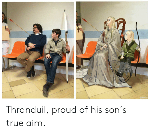 True, Proud, and Aim: @盖长生 Thranduil, proud of his son's true aim.