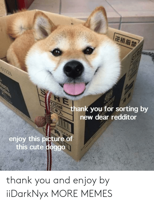 Cute, Dank, and Memes: |逆積厳禁  1225  O thank you for sorting by  2*7  RE  SOKRY  new dear redditor  enjoy this picture of  this cute doggo thank you and enjoy by iiDarkNyx MORE MEMES