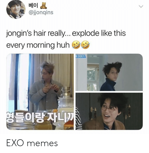 Reall: 베이  @jjonqins  jongin's hair reall... explode like this  every morning huh  영들이랑 자니까 EXO memes