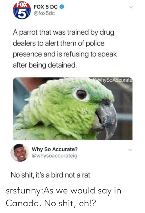 Police, Shit, and Tumblr: 0  FOX 5 Dc  @fox5dc  5  A parrot that was trained by drug  dealers to alert them of police  presence and is refusing to spealk  after being detained.  hySoAccurat  Why So Accurate?  @whysoaccurateig  No shit, it's a bird not a rat srsfunny:As we would say in Canada. No shit, eh!?