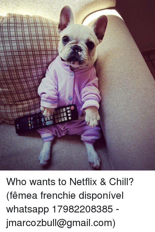 Chill, Memes, and Netflix: 00  ○MENU  AK OUOL EXITC  @io Who wants to Netflix & Chill? (fêmea frenchie disponível whatsapp 17982208385 - jmarcozbull@gmail.com)