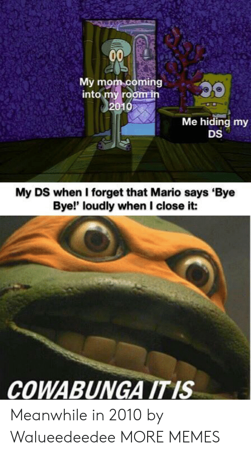 Dank, Memes, and Target: 00  My mom coming  into my room in  2010  Me hiding my  DS  My DS when I forget that Mario says Bye  Bye!' loudly when I close it:  COWABUNGA ITIS Meanwhile in 2010 by Walueedeedee MORE MEMES
