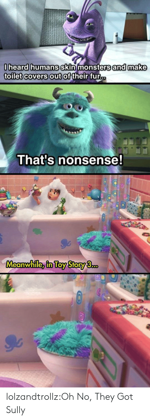 Toy Story, Tumblr, and Blog: 0heard humans skin monsters and make  toilet covers out of their fur...  That's nonsense!  Meanwhile, in Toy Story 3.co. lolzandtrollz:Oh No, They Got Sully