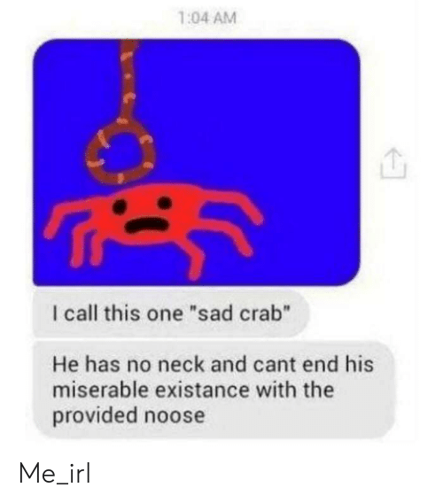 "Sad, Irl, and Me IRL: 1:04 AM  I call this one ""sad crab""  He has no neck and cant end his  miserable existance with the  provided noose Me_irl"