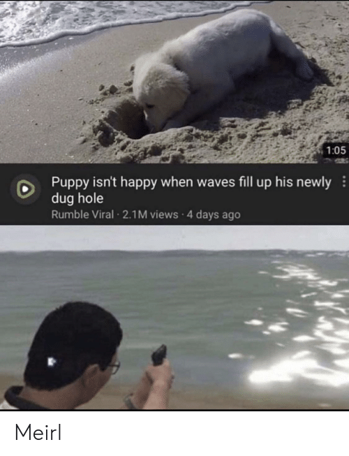Waves, Happy, and Puppy: 1:05  Puppy isn't happy when waves fill up his newly  dug hole  Rumble Viral 2.1M views 4 days ago Meirl