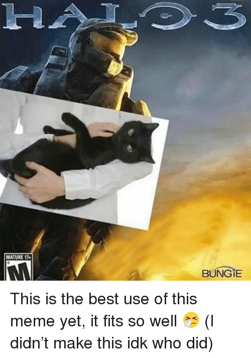 Meme, Memes, and Best: 1-2  MATURE 17  BUNGIE This is the best use of this meme yet, it fits so well 🤧 (I didn't make this idk who did)