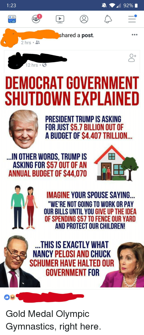 "Children, Work, and Budget: 1:23  1  hared a post.  2 hrs .  O+  12 hrs  DEMOCRAT GOVERNMENT  SHUTDOWN EXPLAINED  PRESIDENT TRUMP IS ASKING  FOR JUST S5.7 BILLION OUT OF  A BUDGET OF $4.407 TRILLION..  IN OTHER WORDS, TRUMP IS  ASKING FOR $57 OUT OF AN  ANNUAL BUDGET OF $44,070  田  IMAGINE YOUR SPOUSE SAYING...  ""WE'RE NOT GOING TO WORK OR PAY  OUR BILLS UNTIL YOU GIVE UP THE IDEA  OF SPENDING $57 TO FENCE OUR YARD  AND PROTECT OUR CHILDREN!  THIS IS EXACTLY WHAT  NANCY PELOSI AND CHUCK  SCHUMER HAVE HALTED OUR  GOVERNMENT FOR Gold Medal Olympic Gymnastics, right here."