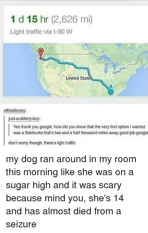 Google, Memes, and Skinny: 1 d 15 hr (2,626 mi)  Light traffic via I-90 W  United State  officialbrony  just-a-skinny-boy  Yes thank you google, how did you know that the very first option I wanted  was a Starbucks that's two and a half thousand miles away good job google  don't worry though, there's light traffic my dog ran around in my room this morning like she was on a sugar high and it was scary because mind you, she's 14 and has almost died from a seizure
