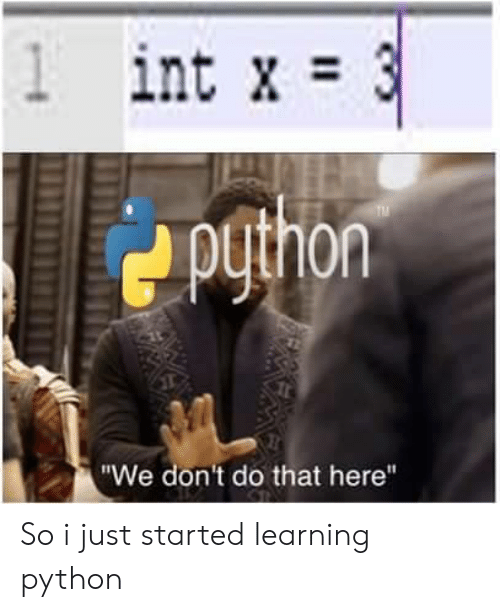 "Python, Int, and Just: 1 int x 3  X  puthon  TM  ""We don't do that here"" So i just started learning python"