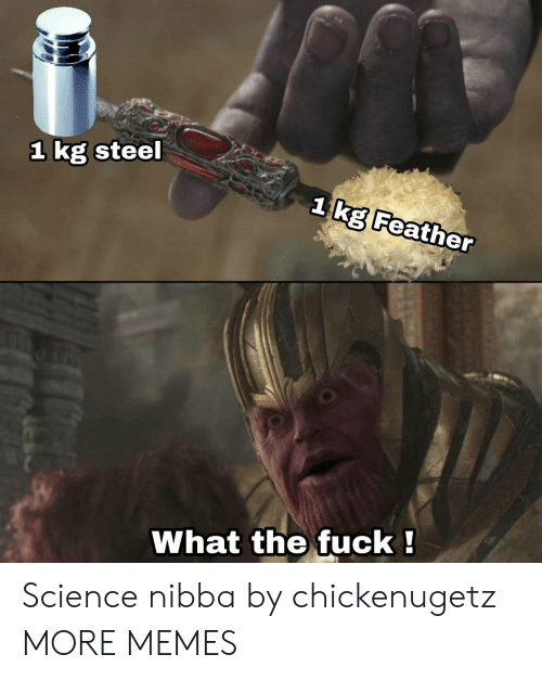 Dank, Memes, and Target: 1 kg steel  1ka Feather  !  What  the fuck Science nibba by chickenugetz MORE MEMES