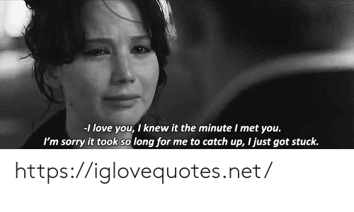 Knew It: -1 love you, I knew it the minute I met you.  I'm sorry it took so long for me to catch up, I just got stuck. https://iglovequotes.net/