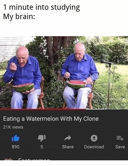Brain, Dank Memes, and Watermelon: 1 minute into studying  My brain:  Eating a Watermelon With My Clone  21K views  890  Share Download  Save