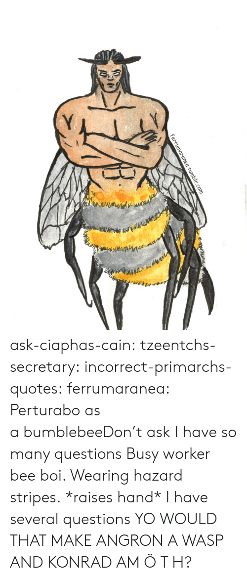 Tumblr, Yo, and Blog: 1.tumblr.com ask-ciaphas-cain:  tzeentchs-secretary:  incorrect-primarchs-quotes:  ferrumaranea:  Perturabo as a bumblebeeDon't ask  I have so many questions   Busy worker bee boi. Wearing hazard stripes.  *raises hand* I have several questions  YO WOULD THAT MAKE ANGRON A WASP AND KONRAD AM Ö T H?