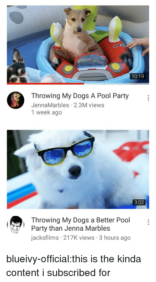 Dogs, Party, and Tumblr: 10:19  Throwing My Dogs A Pool Party  JennaMarbles 2.3M views  1 week ago   3:02  Throwing My Dogs a Better Pool  Party than Jenna Marbles  jacksfilms 217K views 3 hours ago blueivy-official:this is the kinda content i subscribed for