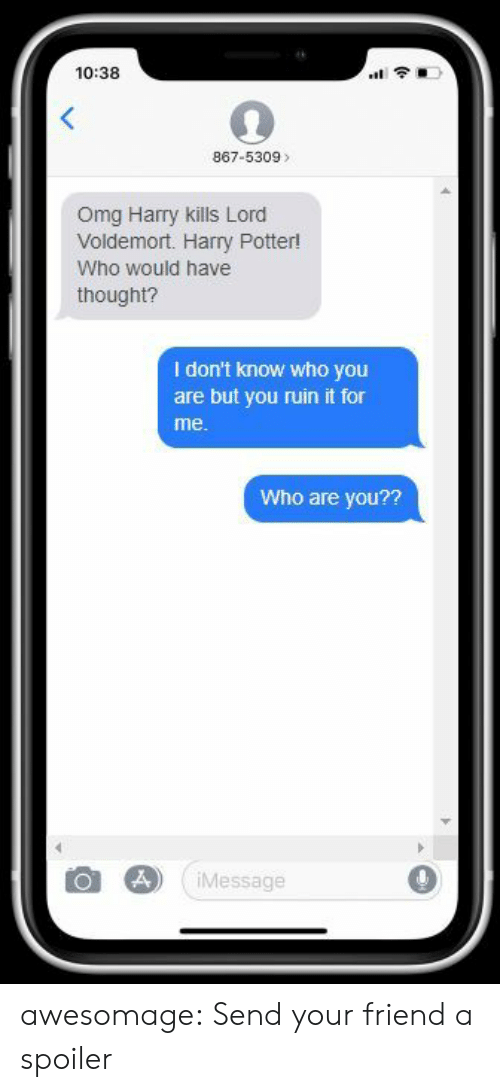voldemort: 10:38  1令.  867-5309>  Omg Harry kills Lord  Voldemort. Harry Potter!  Who would have  thought?  I don't know who you  are but you ruin it for  me.  Who are you??  Message awesomage:  Send your friend a spoiler