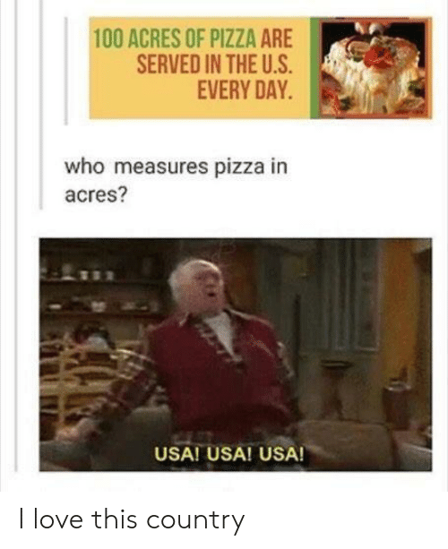Love, Pizza, and Usa: 100 ACRES OF PIZZA ARE  SERVED IN THE U.S  EVERY DAY  who measures pizza in  acres?  USA! USA! USA! I love this country