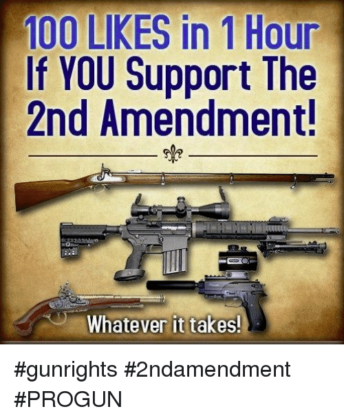 Anaconda, Memes, and 2nd Amendment: 100 LIKES in 1 Hour  If YOU Support The  2nd Amendment!  Whatever it takes! #gunrights #2ndamendment #PROGUN